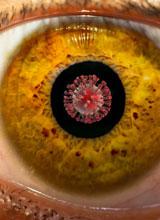 Ophthalmology Specialty Spotlight
